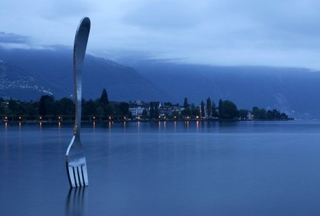 fork-in-a-lake_676506n